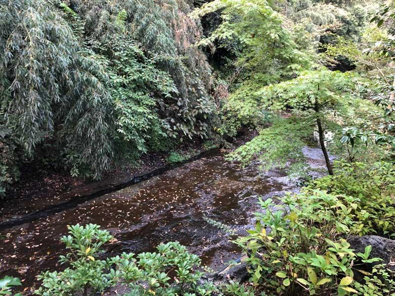鎌倉の原風景の山と渓流