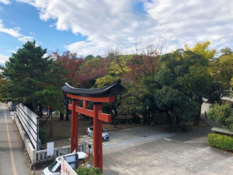 平塚八幡宮の紅葉はまだかな