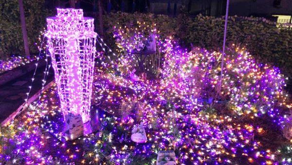 【江ノ電江ノ島駅ホームのガー電が凄いと評判】ミニ庭園イルミメーション!ミニシーキャンドルもあるよ!