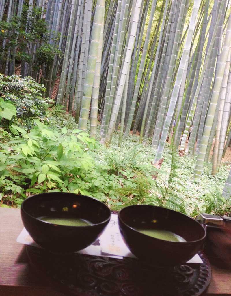 報国寺の竹林を眺めながらお茶を楽しむ