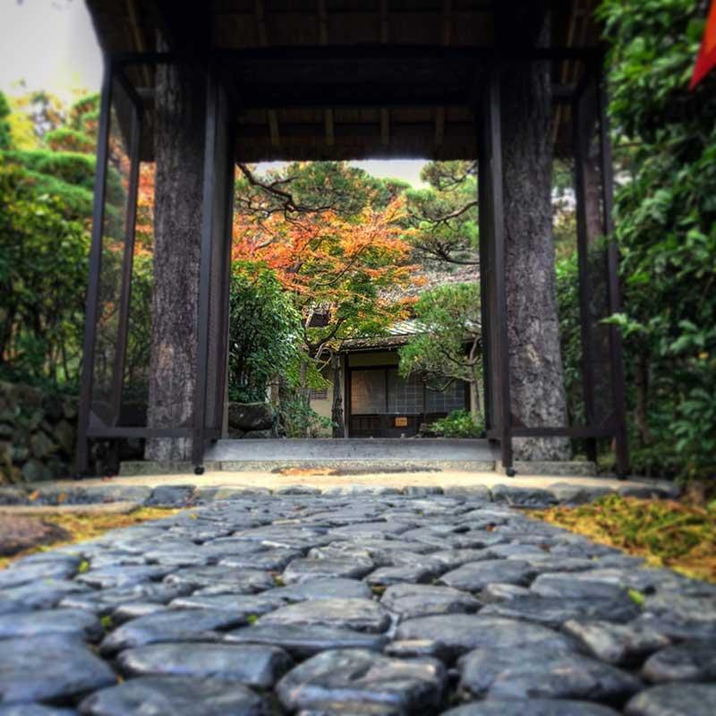門の向こうに紅葉が見えます