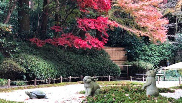 【鎌倉明月院2018年12月】本堂後庭園が特別公開中!丸窓の向こう側は絶景の紅葉撮影スポットだった!