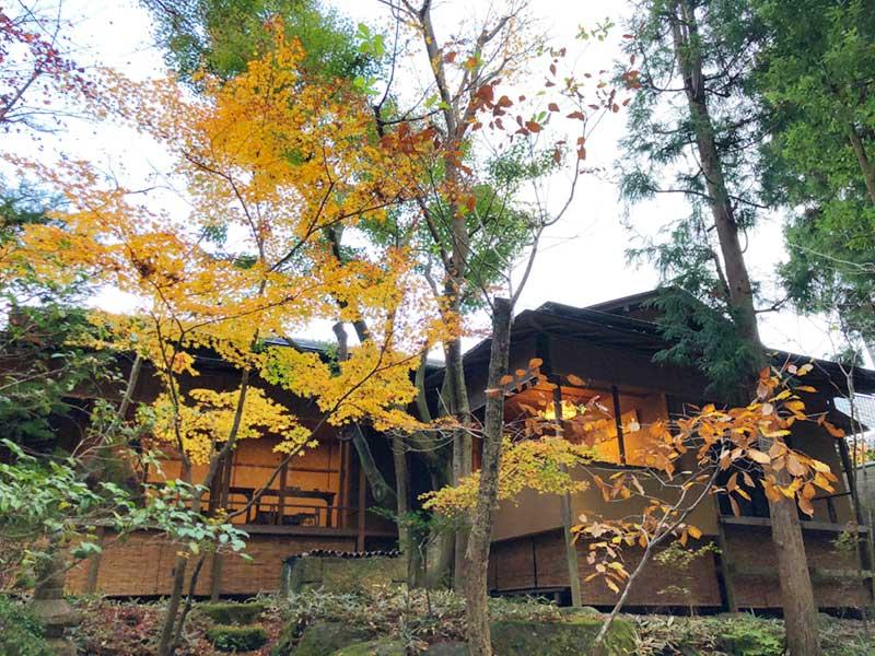 一条恵観山荘の寺カフェと紅葉