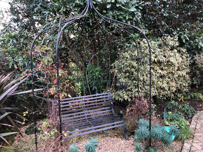草木に囲まれた椅子