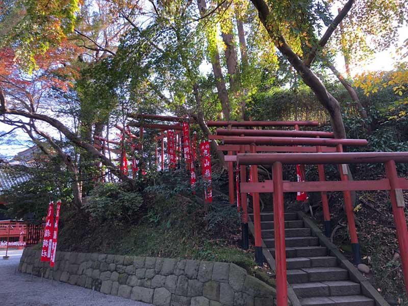 鎌倉八幡宮の裏手に出た