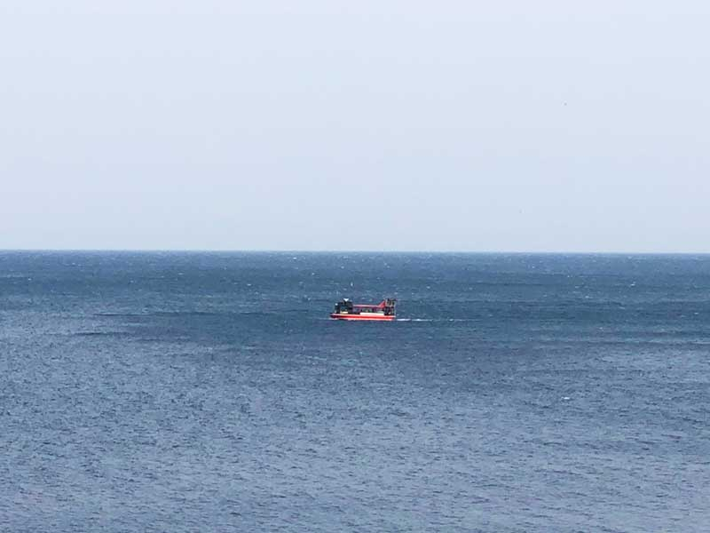 船が通り過ぎるのをのんびり眺めたり
