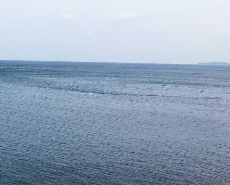 向こうには初島が見える