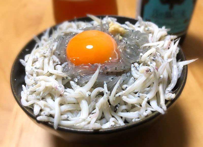 【江ノ島生しらす2019】1番安くて新鮮で旨い!浜野水産の生しらすメガ盛り3色丼!ご飯持参したい。