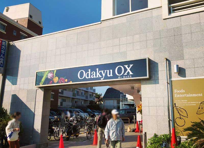 【鵠沼海岸OdakyuOX江ノ島店に行ってきた感想】NEWオープン特価あり!野菜フルーツ種類豊富!地魚・おしゃれデリたくさん!