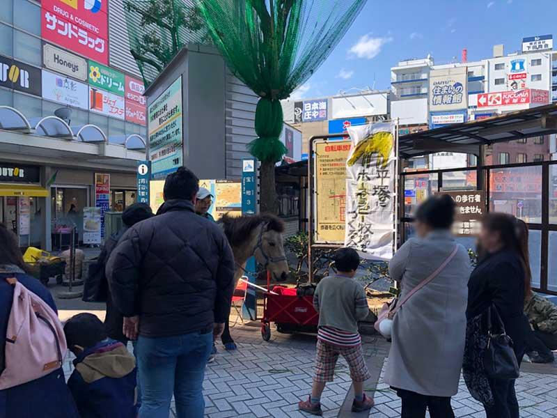 平塚駅北口でホースセラピー開催中
