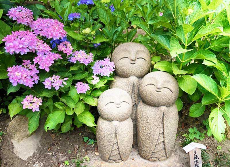 【2019鎌倉長谷寺あじさい】6月下旬が1番の見頃!空いている午前中がおすすめ!午後は団体客で大混雑