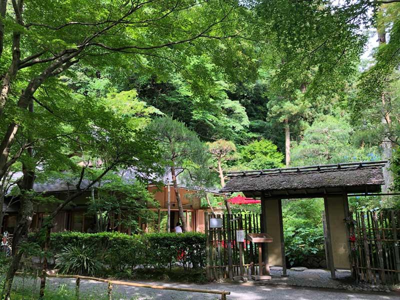 梅雨の明月院の寺カフェ「月笑軒」