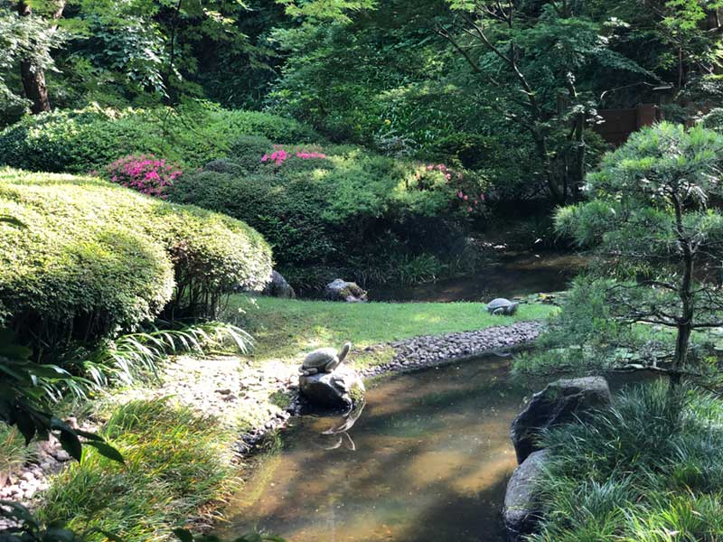 静かな庭園が広がっている