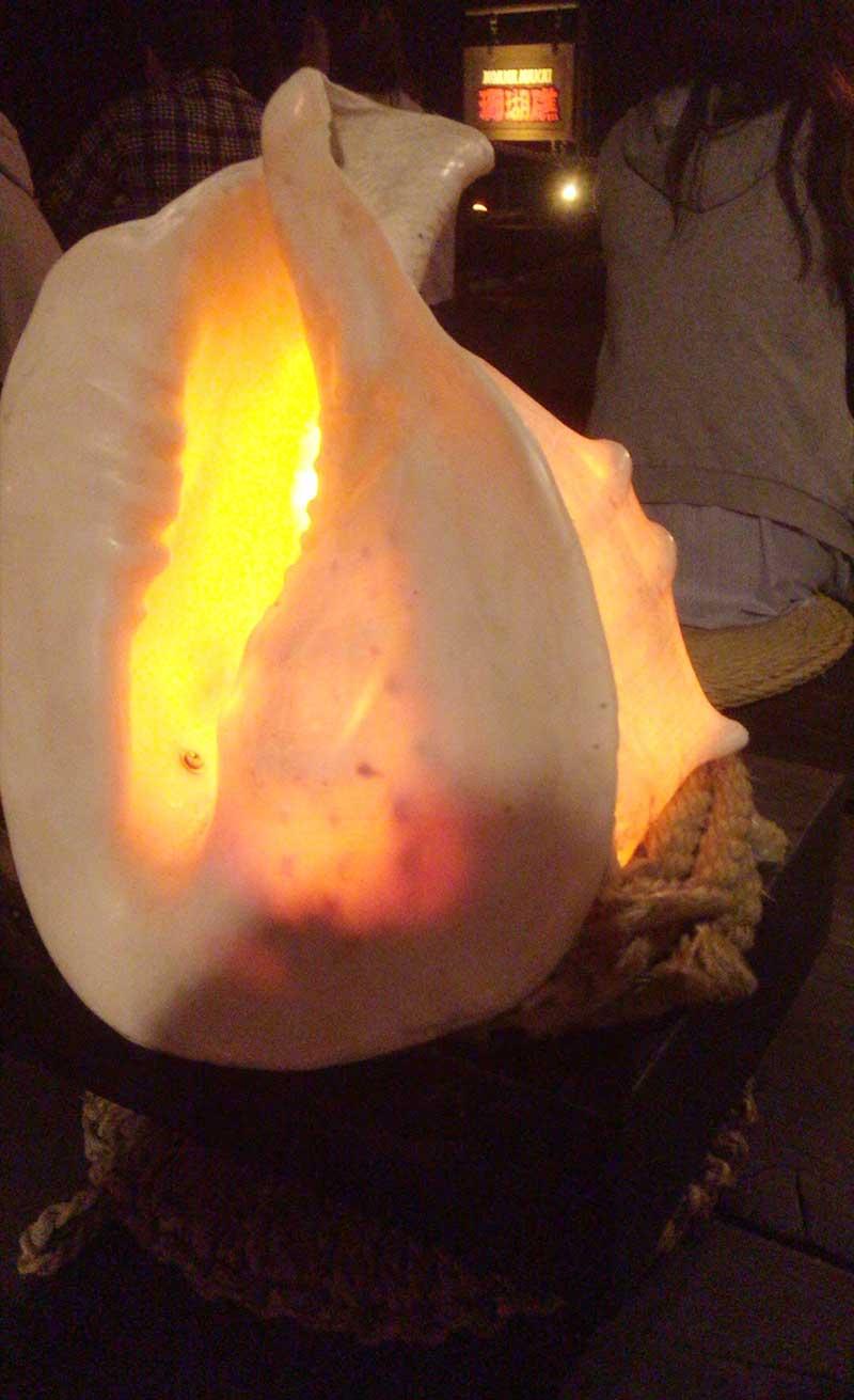 貝殻の照明も素敵