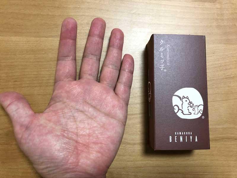 手と同じ大きさ