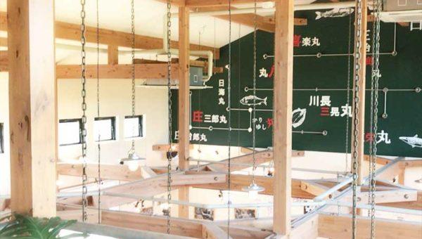 【平塚漁港の食堂】新鮮地魚がおすすめ!広々カフェ風でくつろげる!手頃な値段の良心店!観光客向けのぼったくり無し!