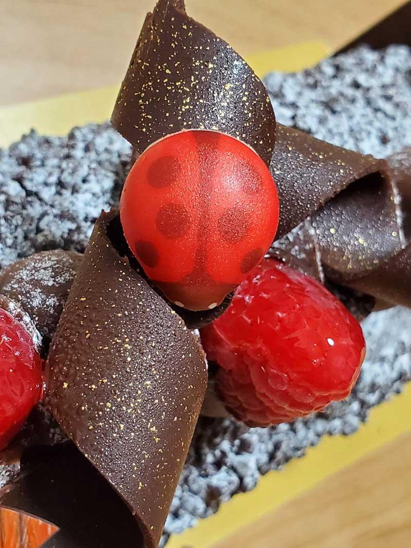 赤いテントウムシのチョコ