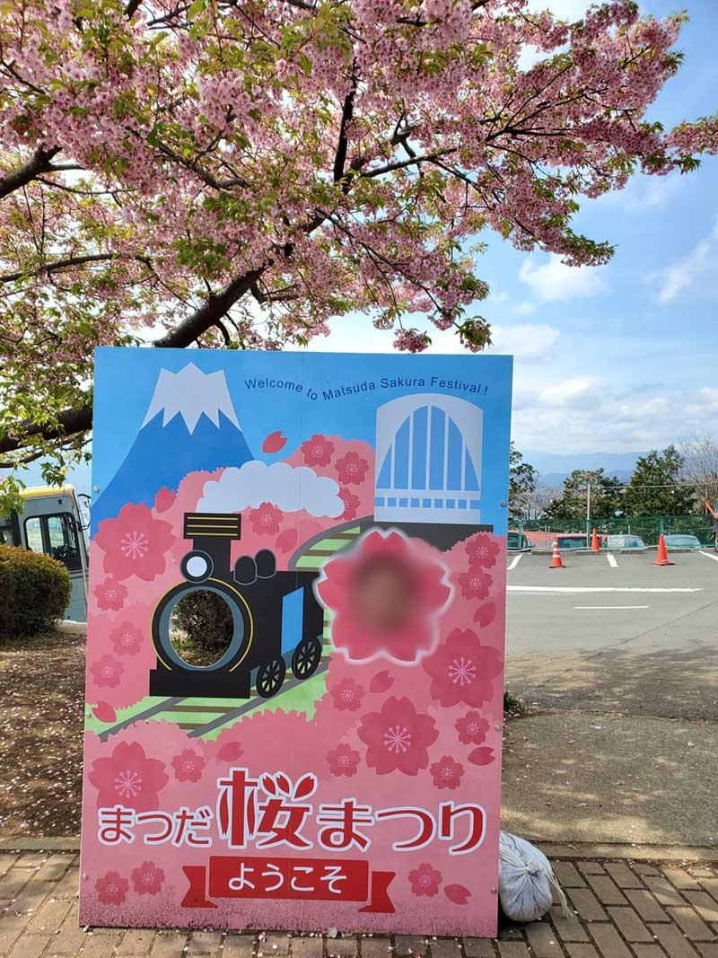 まつだ桜まつりの顔ハメパネル