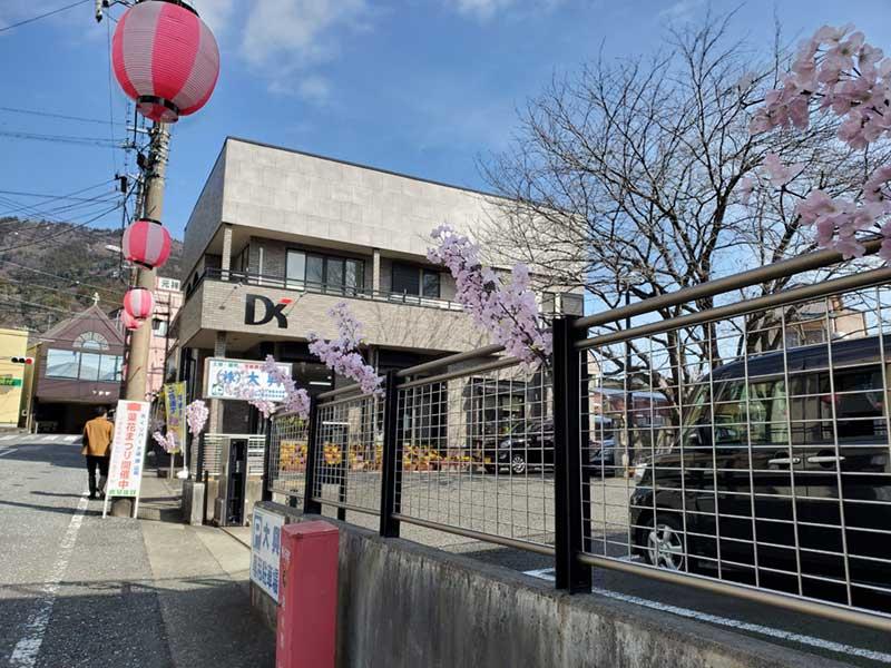 駅前も桜まつり一色