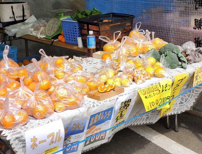 美味しい地場産フルーツが安い!