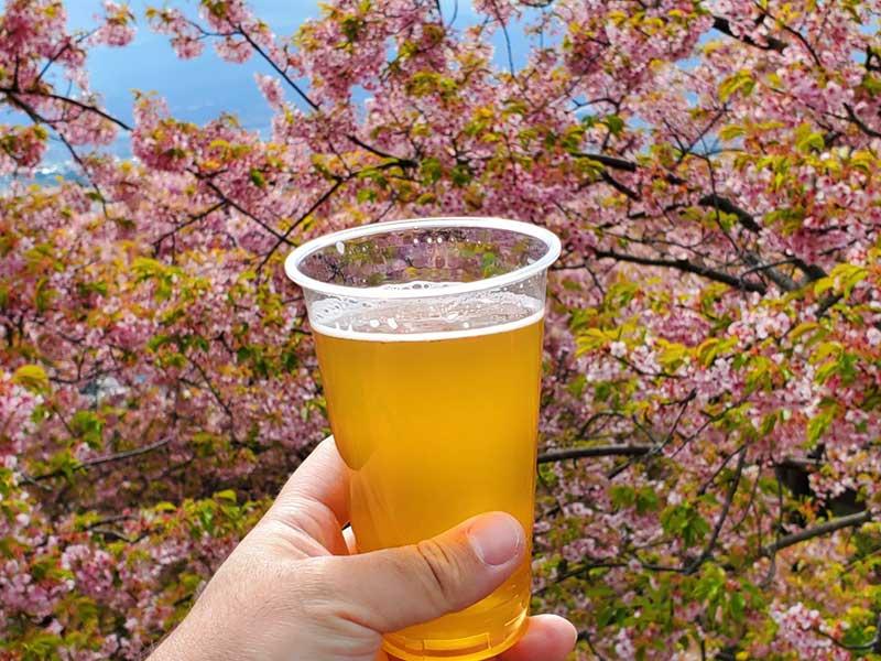 地元産のクラフトビール