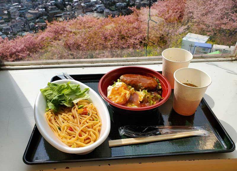 【松田山ハーブガーデン】展望レストランで名物足柄牛ハンバーグ丼を食す!