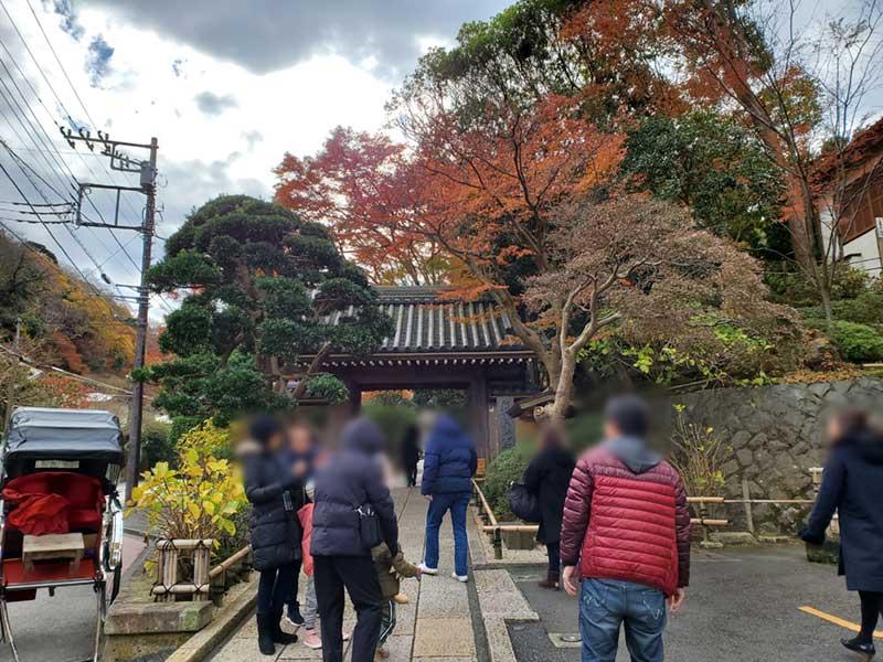 外国人にも人気の鎌倉報国寺