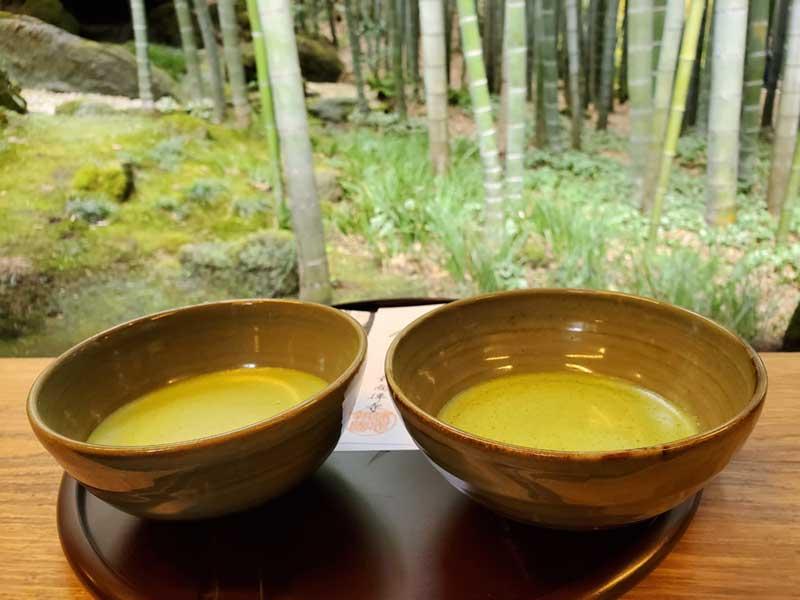 竹林を眺めながらいただく抹茶