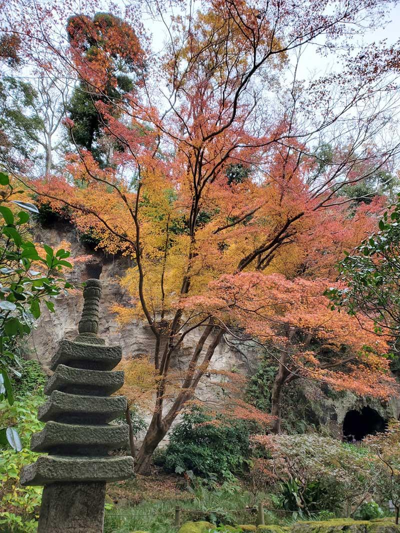 やぐらにかかる紅葉も綺麗
