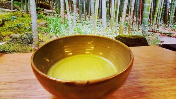 【冬の報国寺の楽しみ】竹林に囲まれた寺カフェ「休耕庵」で抹茶をいただく