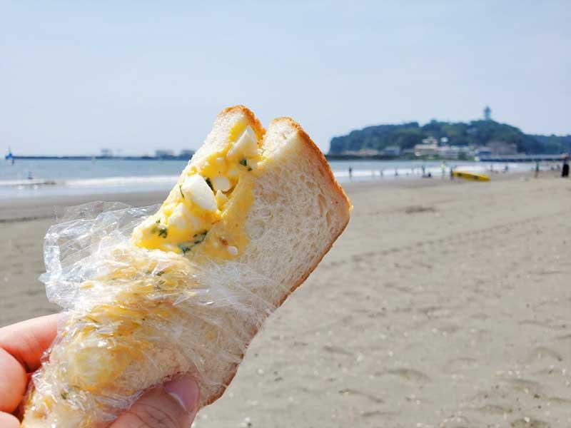 手作りサンドイッチを持参しました