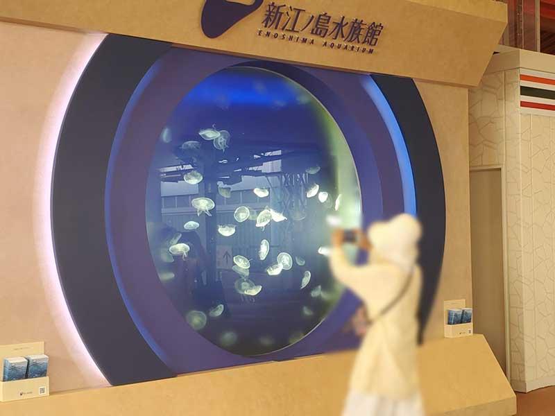 駅構内には生きたクラゲの水槽が