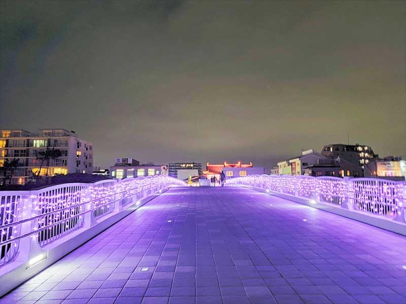 紫一色に染まっている弁天橋